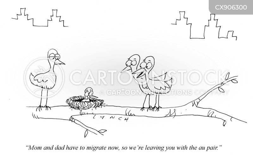 migrating birds cartoon
