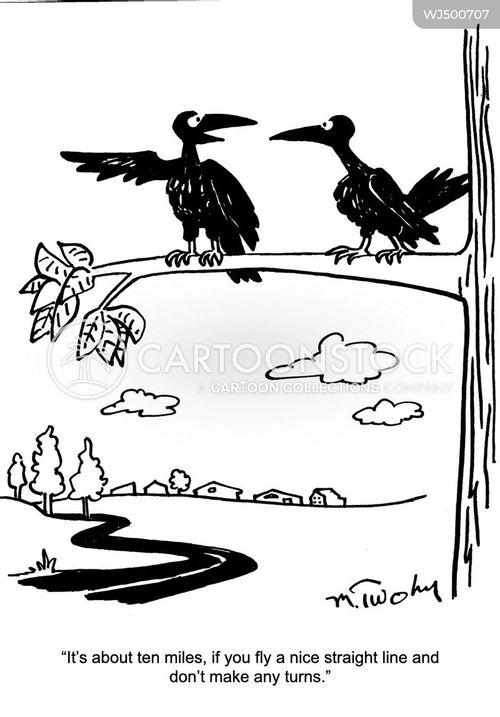 guiding cartoon