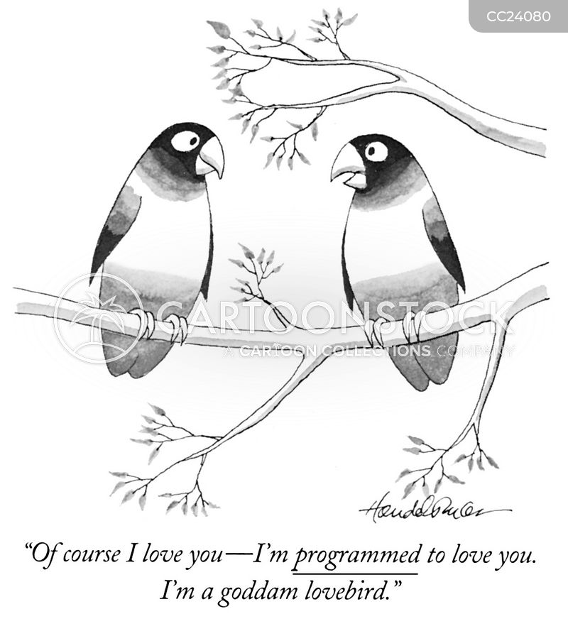 romantics cartoon