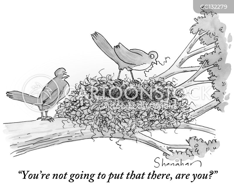building a nest cartoon