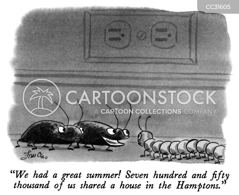 cockroaches cartoon