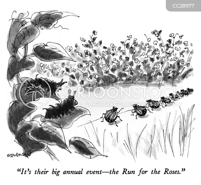 Races cartoon