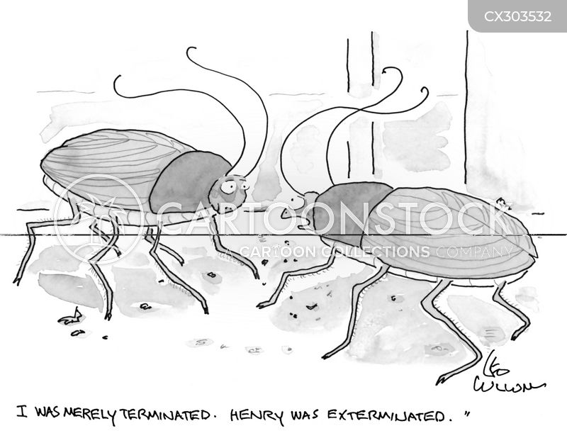 Bugs cartoon