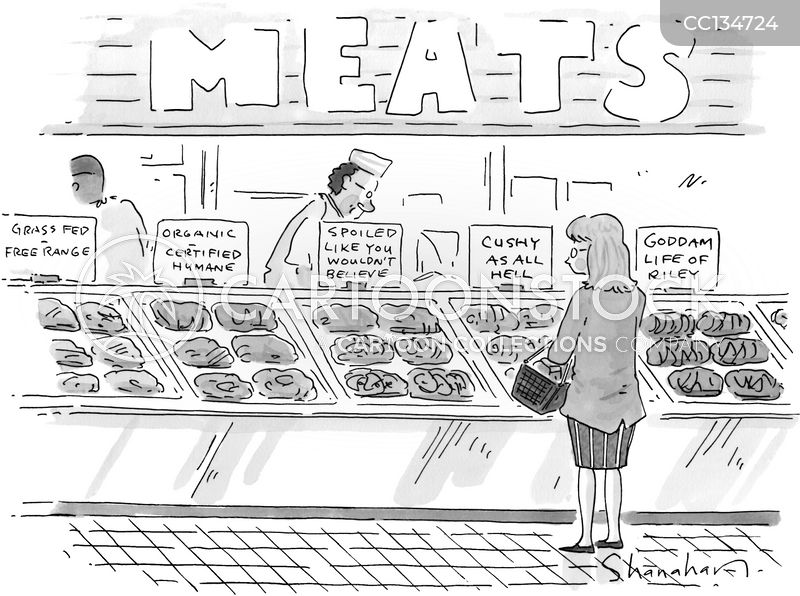 grocery stores cartoon