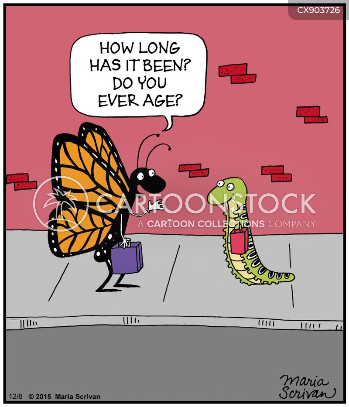 hasnt aged cartoon