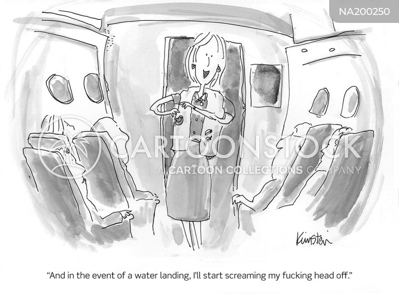 cabin crew cartoon