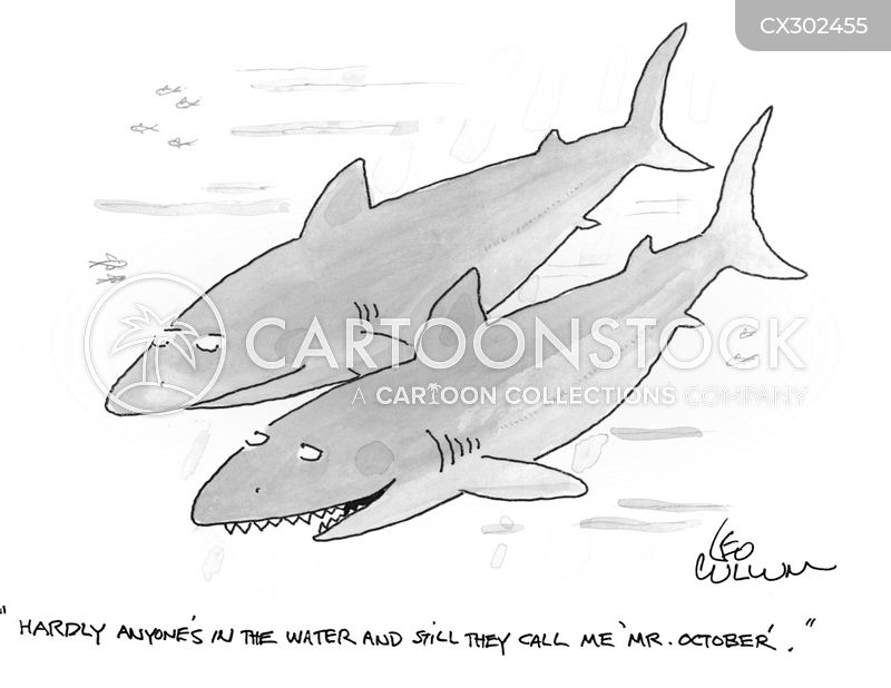 sea animal cartoon