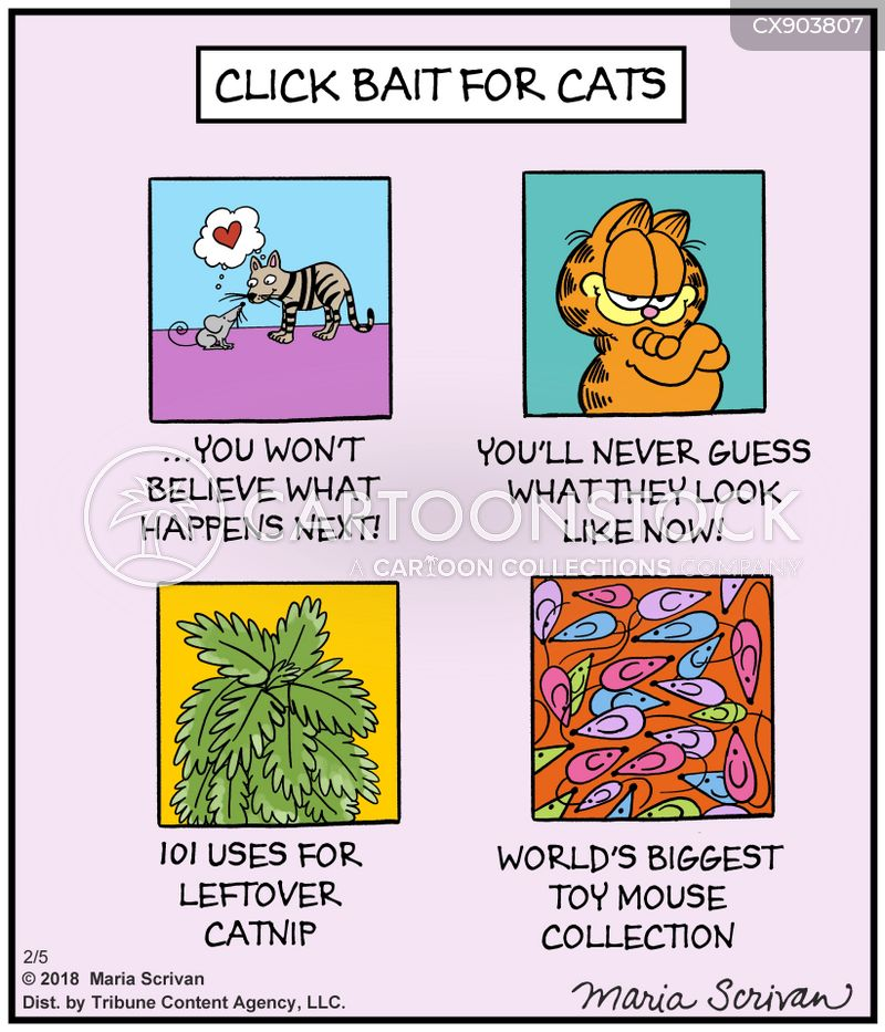 cat and mouse cartoon