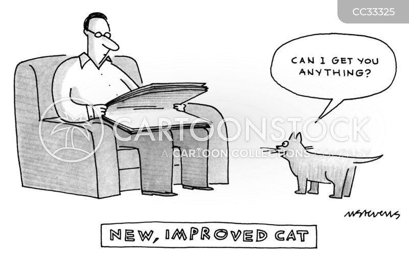 improvement cartoon