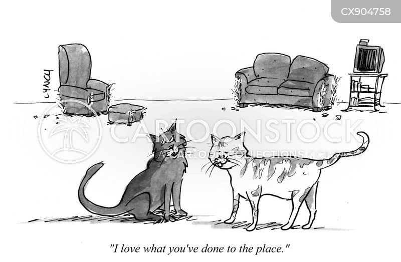 cat person cartoon