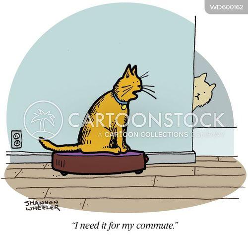 cat video cartoon
