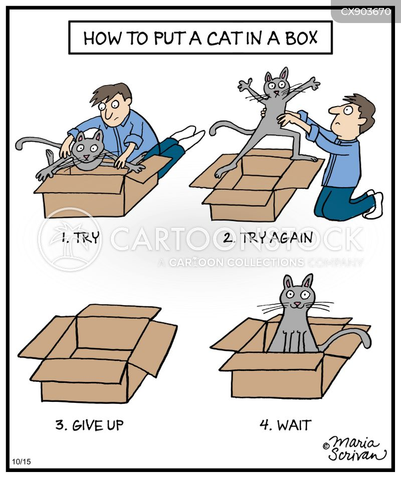 crazy cat people cartoon