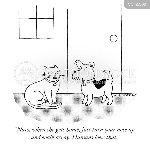 dog behaviour cartoon
