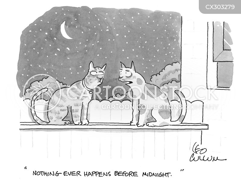Witchs Cat cartoon