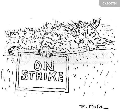 walkouts cartoon