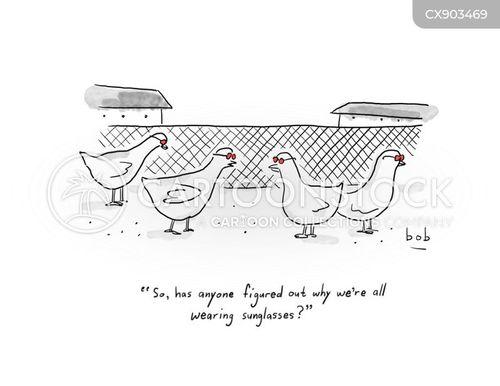 chicken farm cartoon