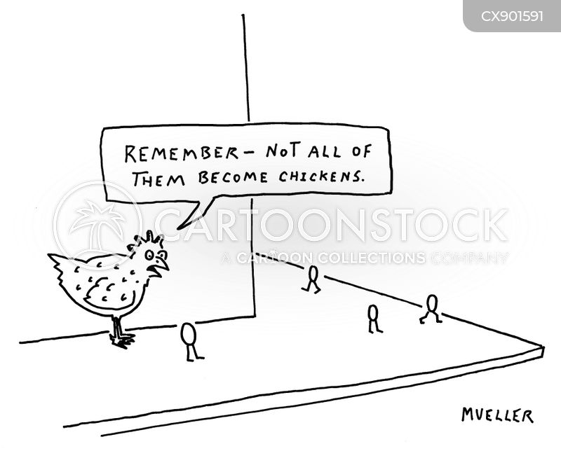 chicken egg cartoon