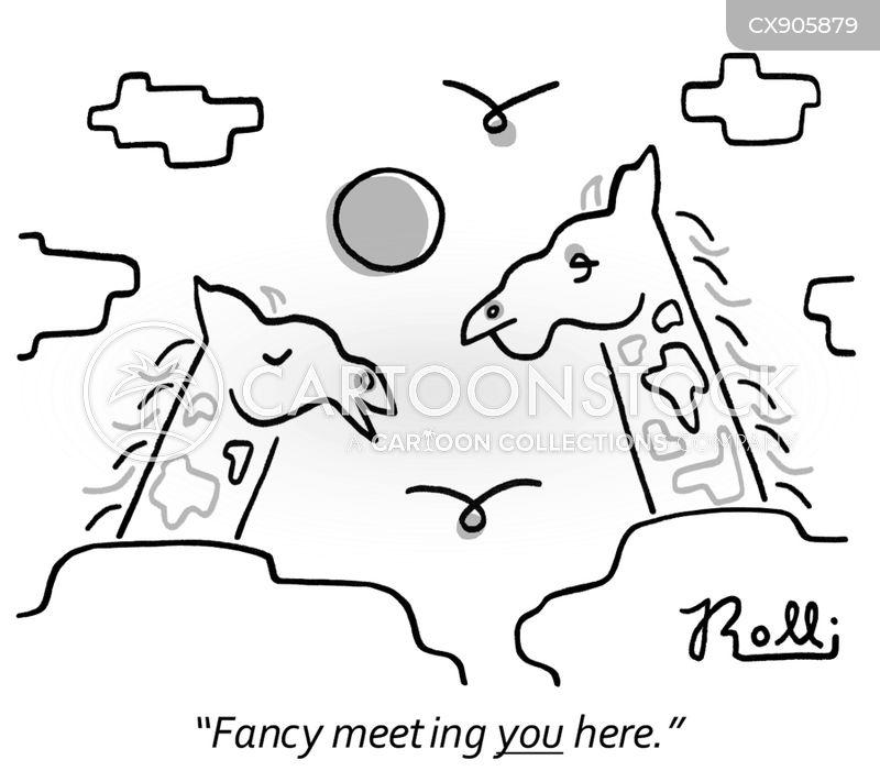 skies cartoon