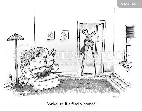 wake up call cartoon