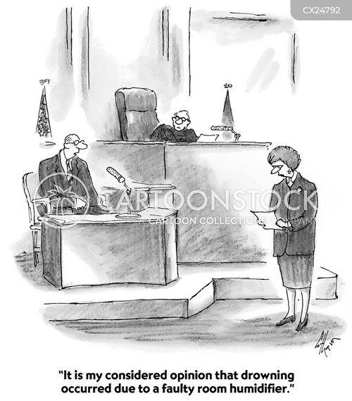 expert witnesses cartoon