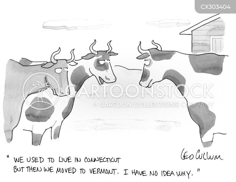 relocation cartoon