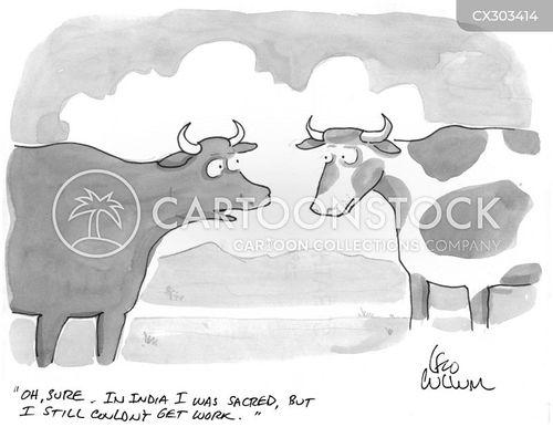 beef cartoon