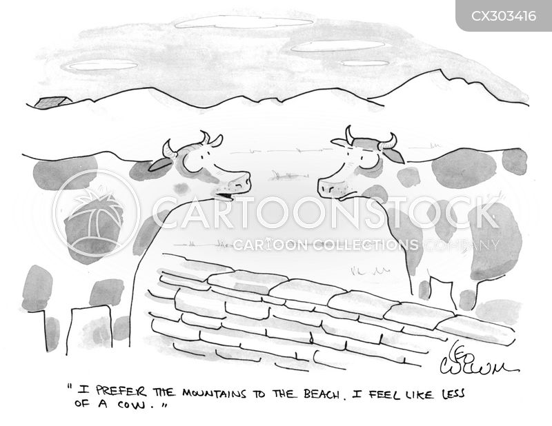 cattle ranches cartoon