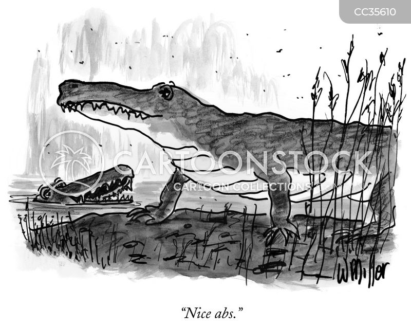crocodiles cartoon