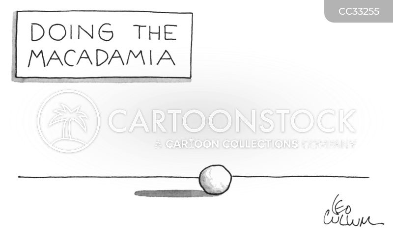 macadamia cartoon