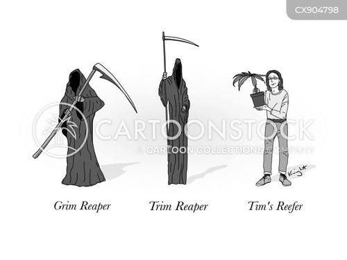 thin cartoon