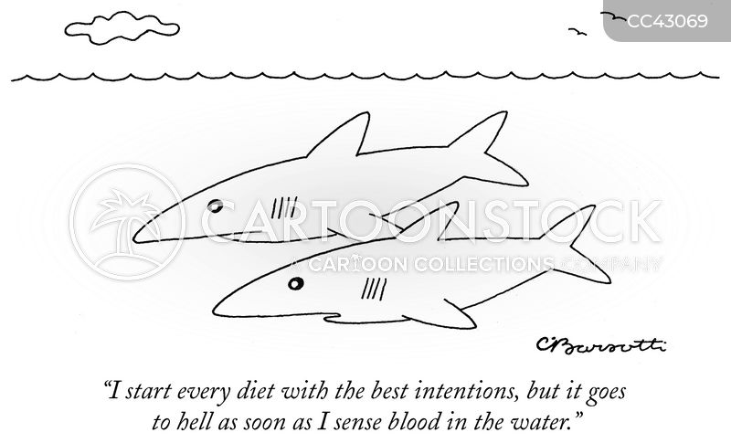 shark cartoon