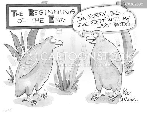 dodos cartoon