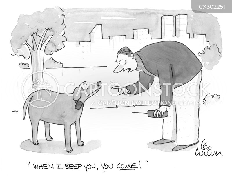 obedience training cartoon