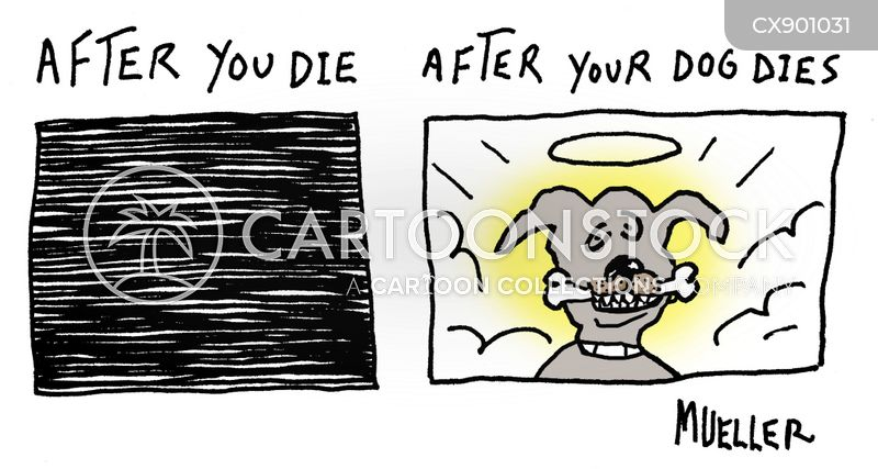 dog heaven cartoon