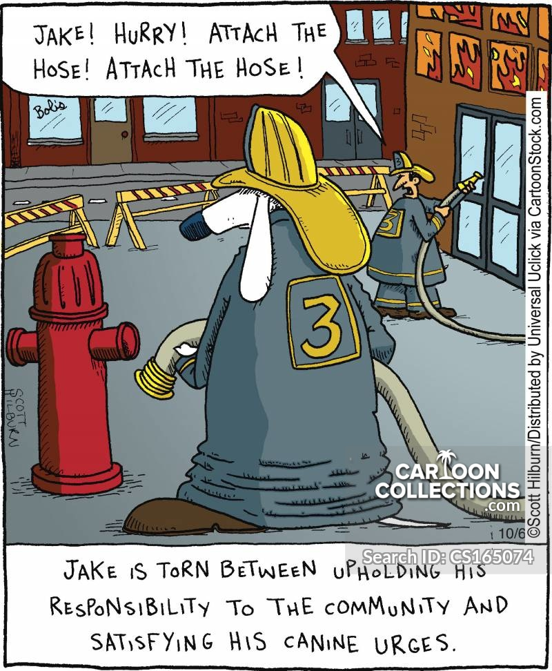 jake cartoon
