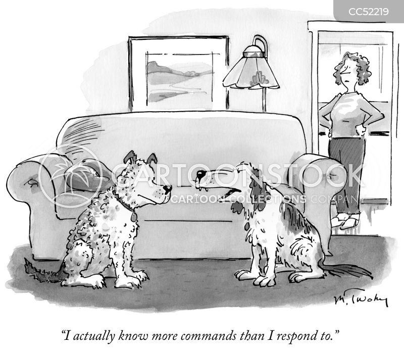 obedience trainer cartoon
