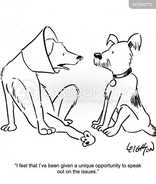 dog cones cartoon