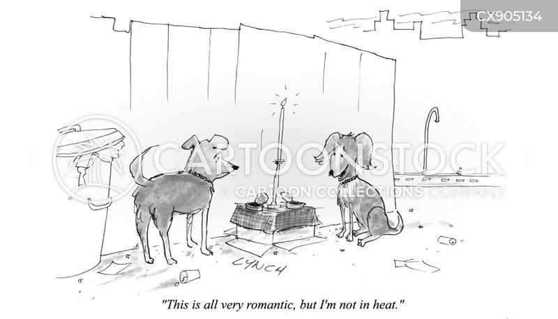 courtship cartoon
