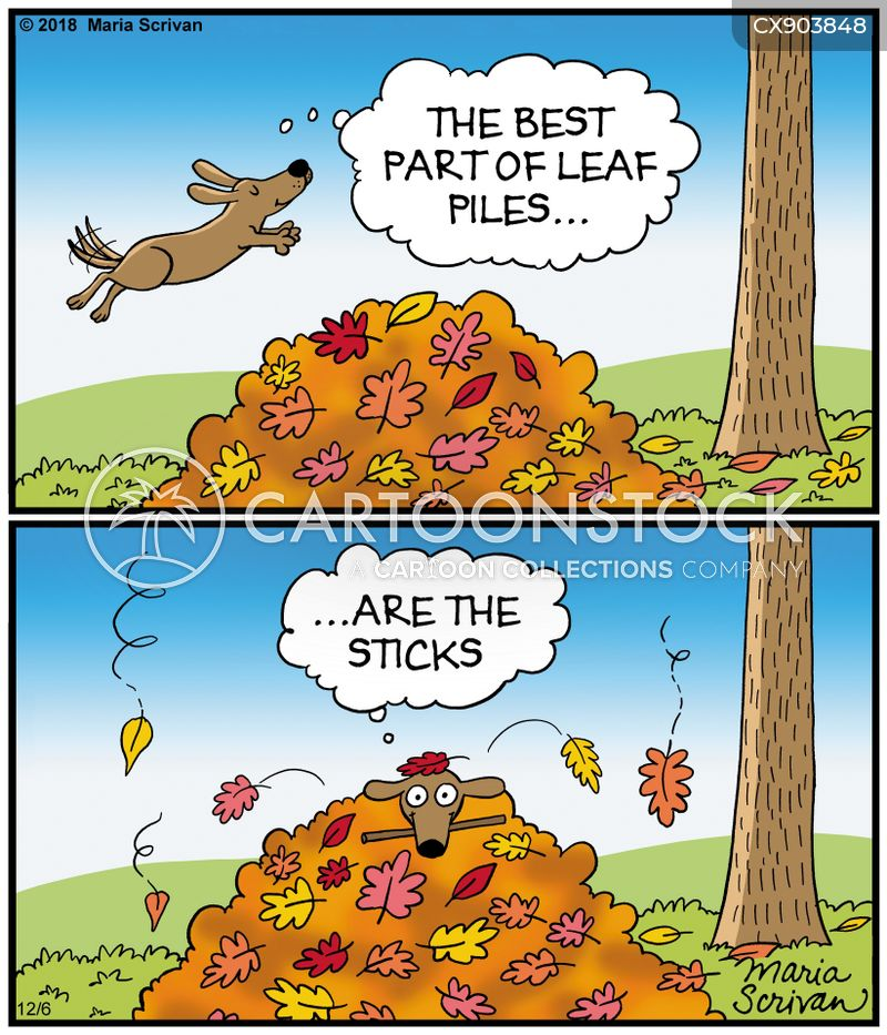 leaf piles cartoon