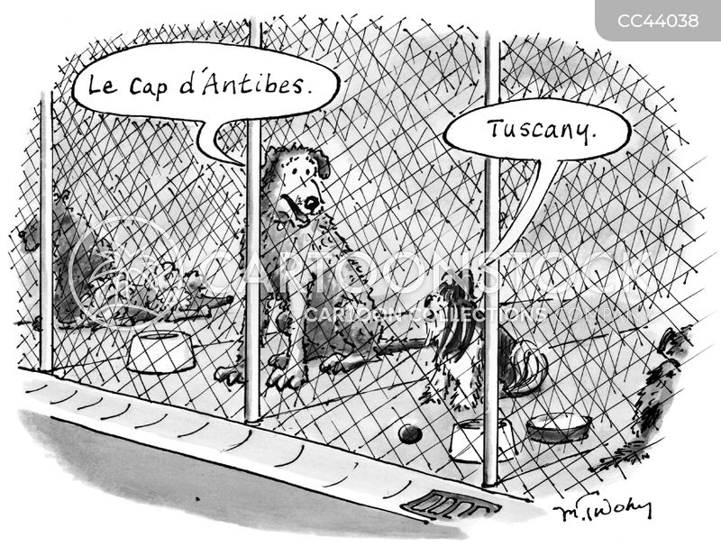 Kennel cartoon