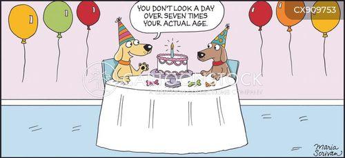 dog years cartoon