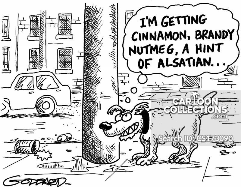 alsatian cartoon