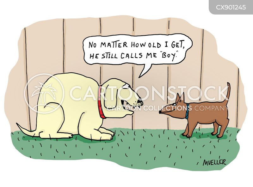 youthful cartoon