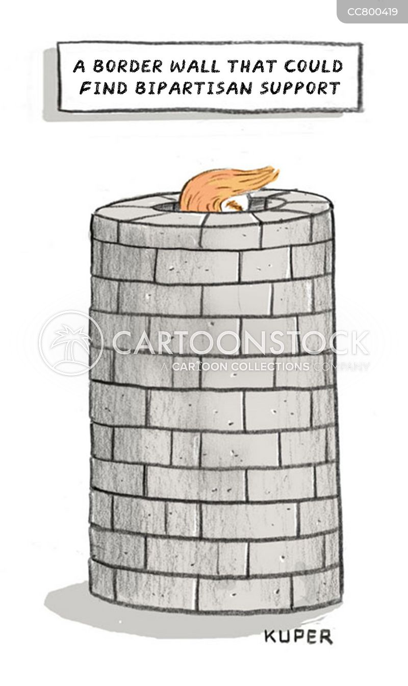 build the wall cartoon