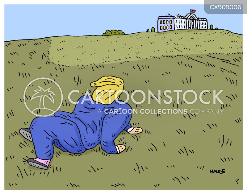 presidential election 2020 cartoon