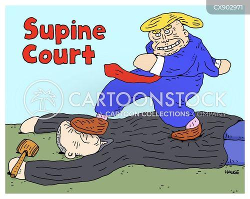 judiciary systems cartoon