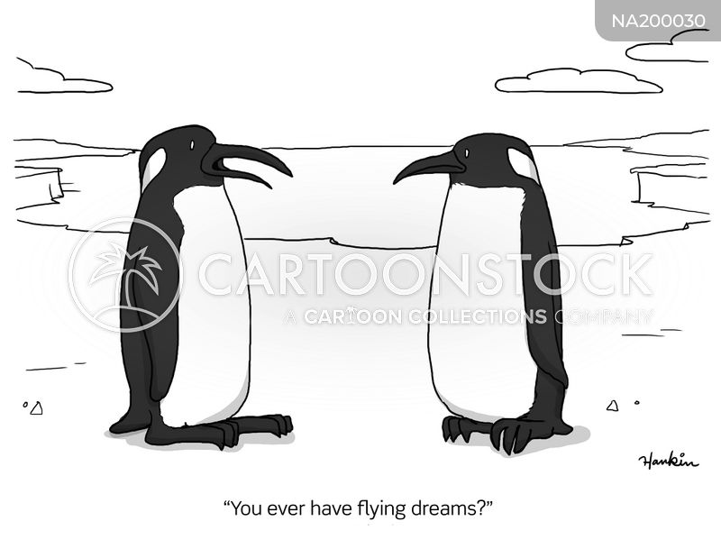 flying dreams cartoon