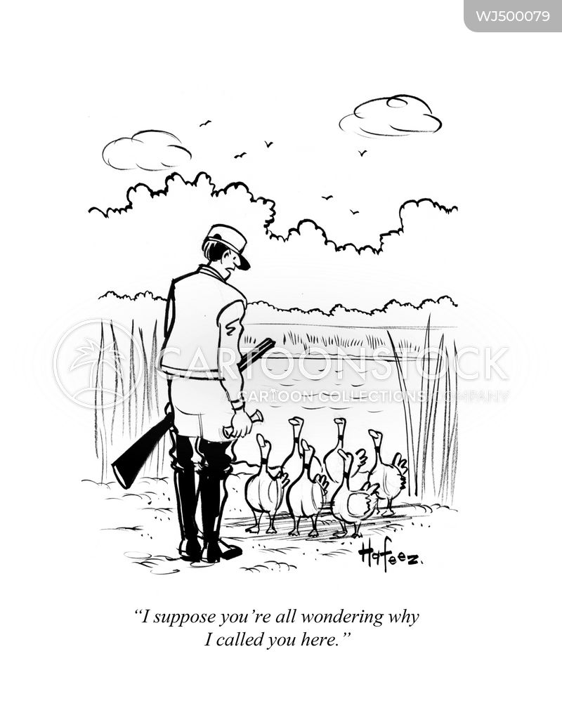sitting duck cartoon