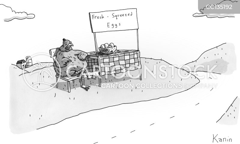 Chickens cartoon