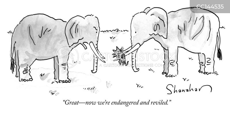 elephant tusk cartoon